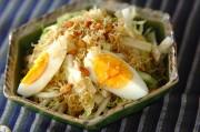 白菜のカリカリジャコサラダ