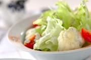 レタスのサラダ
