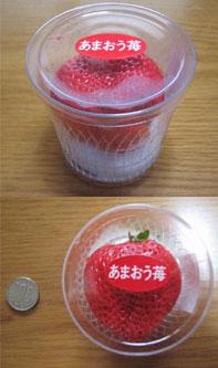"""とにかく大きい""""あまおう苺""""は、一粒でも食べごたえあり。"""