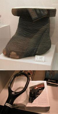(上)まずほかでは見ることができない、象の足でできた椅子。(下)なぜか刑事気分になる、金属探知器体験コーナー