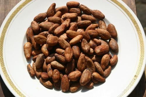 カカオ : ストレス・イライラを解消してくれる食べ物一覧 - NAVER ...