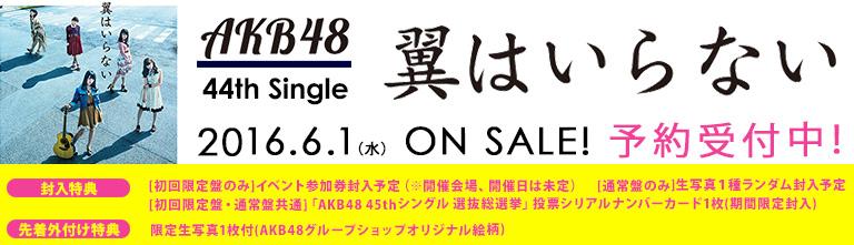 AKB48 44th Single「翼はいらない」