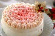 オンブルケーキ(グラデーションケーキ)