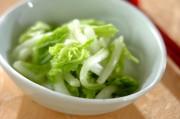 白菜のサッパリ漬け