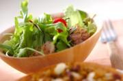 レタスとチキンのサラダ