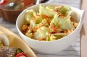 キャベツのホットドレッシングサラダ