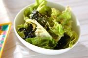 レタスとワカメのゴマ風味サラダ
