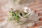 キノコとゴボウのサラダ