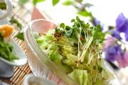 山椒ドレッシングのサラダ
