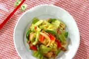 ニンニク・ショウガしょうゆを使った肉野菜炒め
