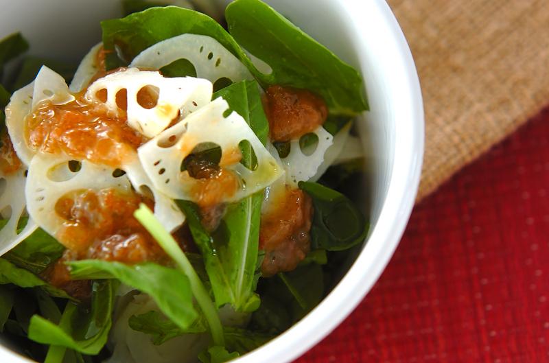 レンコンの梅風味サラダ