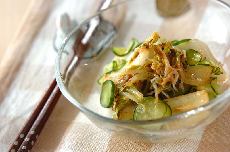 炒め白菜の甘酢和えの作り方の手順