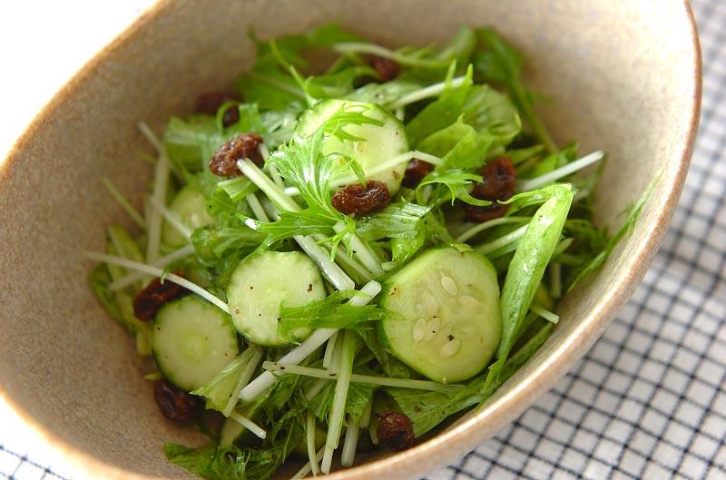 キュウリと水菜のサラダ【E・レシピ】料理のプロが作る簡単 ...