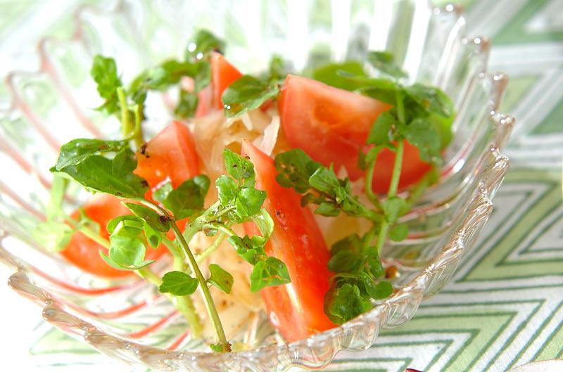 トマトとクレソンのサラダの作り方の手順