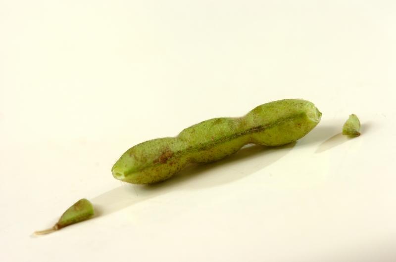 枝豆入り卵サラダの作り方の手順1