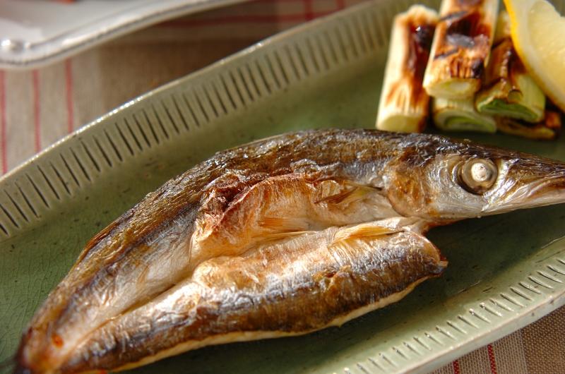 カマスの旬は二度ある!? 上品な白身魚の産地や保存法を解説の画像