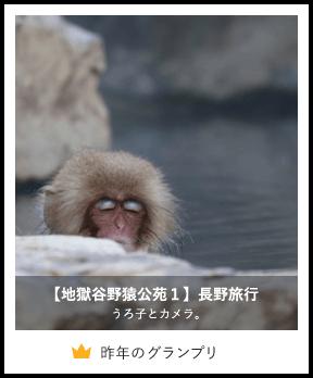 【地獄谷野猿公苑1】長野旅行/うろ子とカメラ。