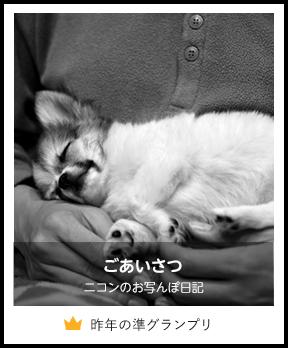 ごあいさつ/ニコンのお写んぽ日記