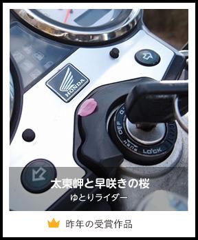太東岬と早咲きの桜/ゆとりライダー