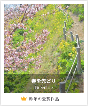 春を先どり/GreenLife
