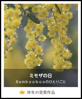 ミモザの日/Bamboobooのひとりごと