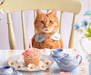 お茶の時間にしましょうか-キャロ&ローラのちいさなまいにち-Caroline & Laura 's Tea Break